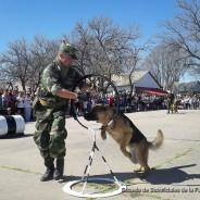 La Sección Perros de Guerra en el Área Material Río Cuarto