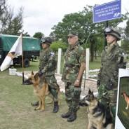 """Entrega de certificados curso de """"Guías de Perros de Guerra"""""""