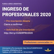 Curso de Servicios Profesionales 2020