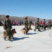 Exhibición de la Sección Perros de Guerra en la Comuna de San Antonio de Arredondo